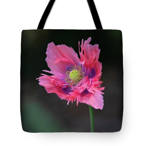 Tote Bag featuring the photograph Pink Poppy by Dale Kincaid