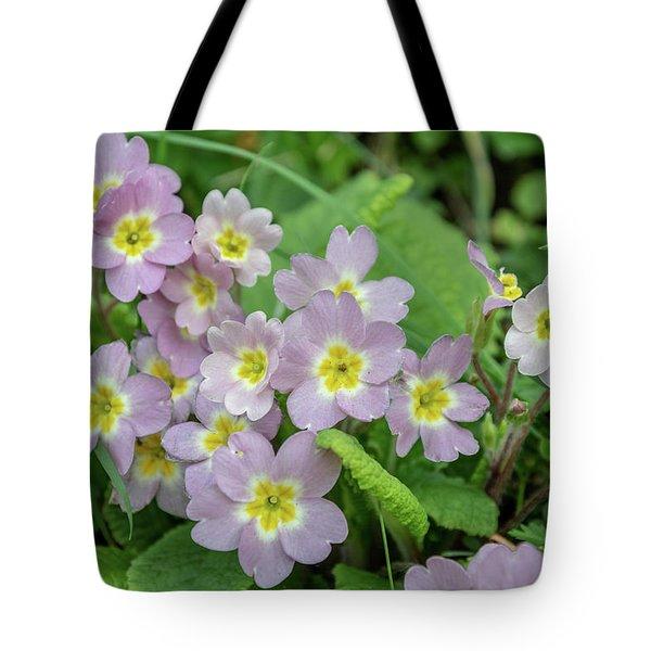 Pink Primroses In Devon Tote Bag