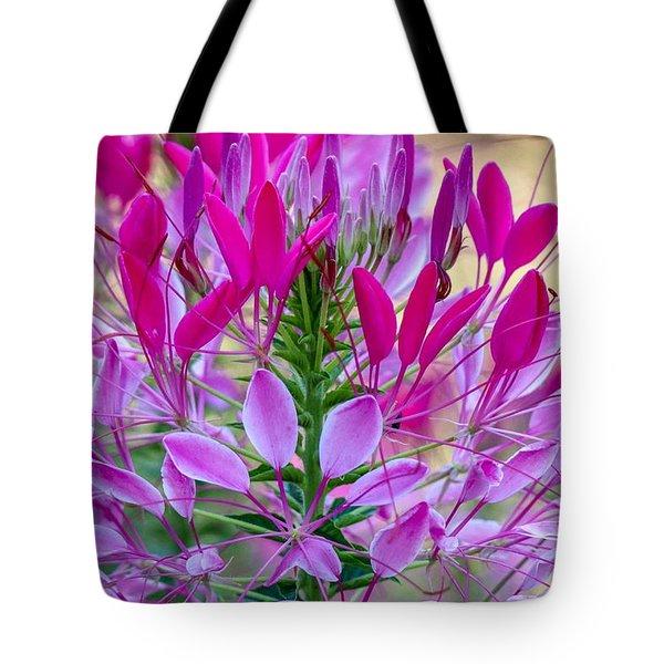 Pink Queen Flower Tote Bag