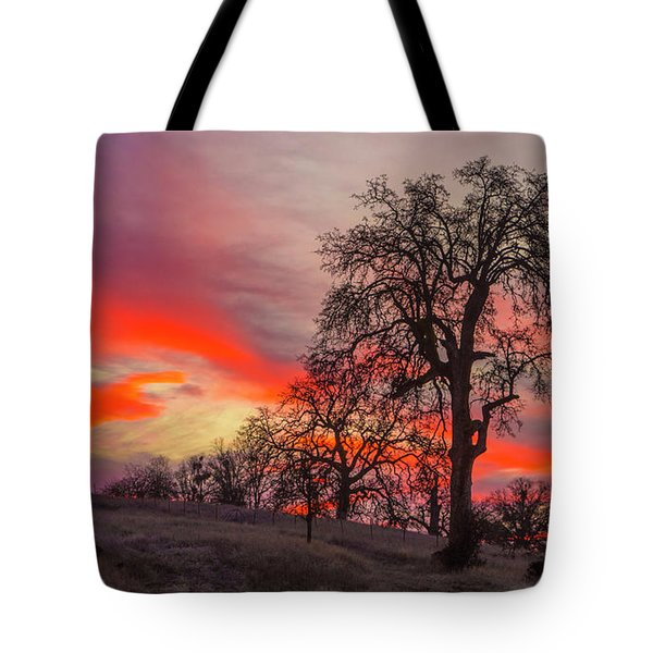 Pink Sunrise Tote Bag