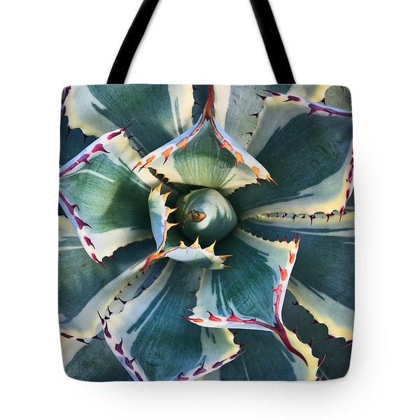 Pinwheel Succulent Tote Bag