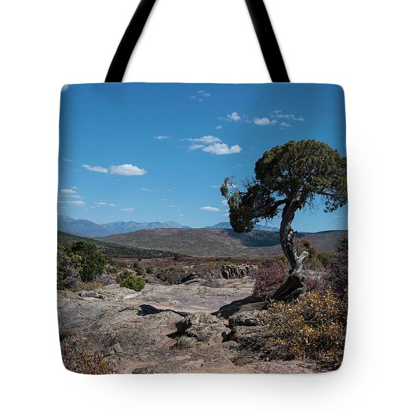 Pinyon Pine With North Rim In Background Black Canyon Of The Gunnison Tote Bag