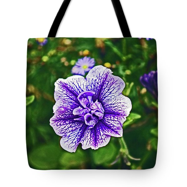 Pitlochry.  Purple Petunia. Tote Bag