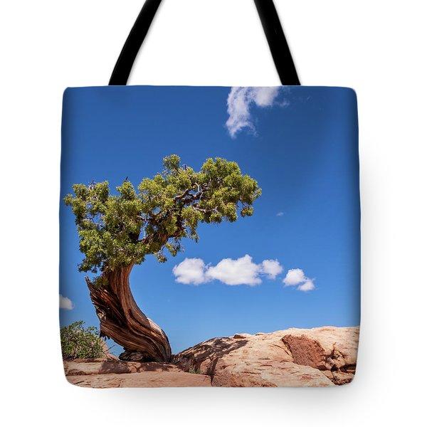 Playful Juniper Tote Bag