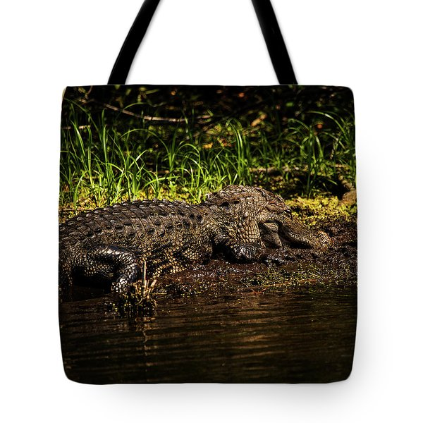Playing In The Mud Tote Bag