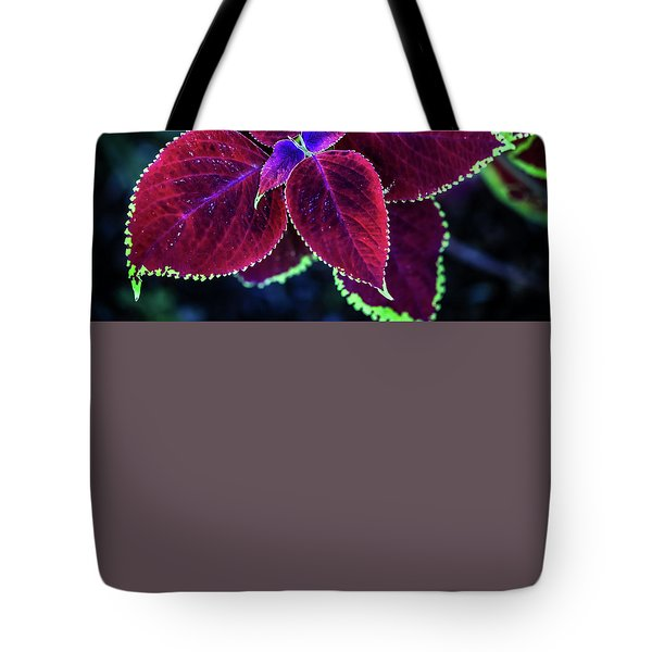 The Unveiling Tote Bag