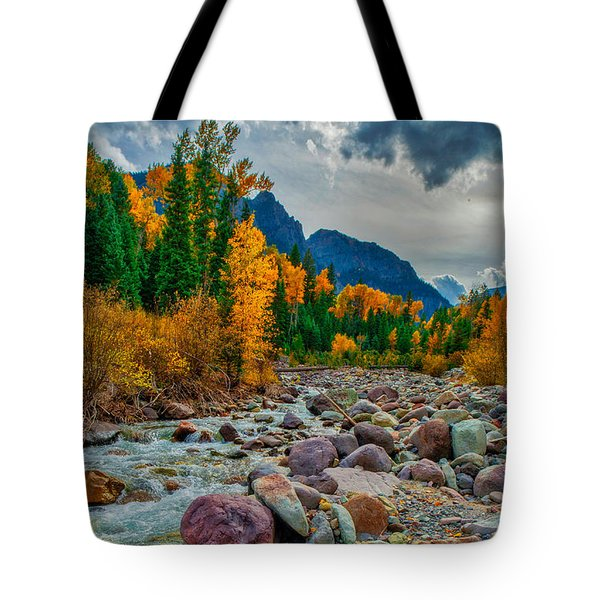 Point Of Color Tote Bag