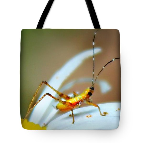 Tote Bag featuring the photograph Pollen Tracks by Candice Trimble