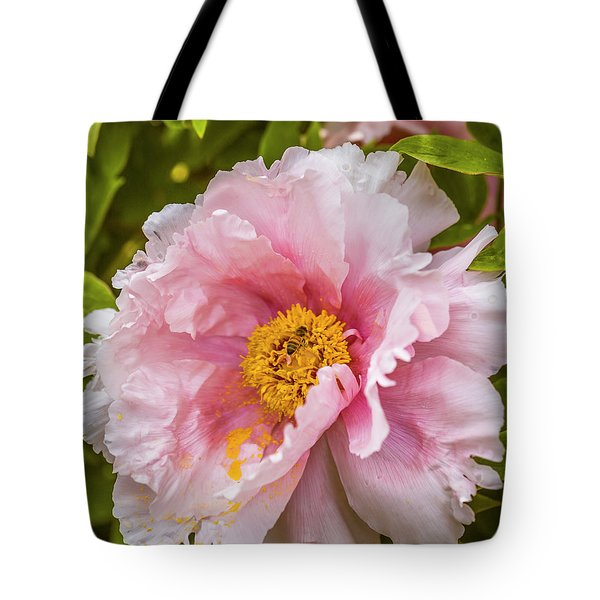 Pollen Trap Sprung Tote Bag