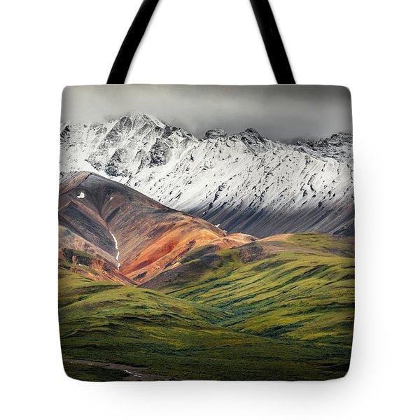Polychrome Mountain, Denali Np, Alaska Tote Bag