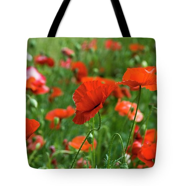 Poppies In The Field Tote Bag
