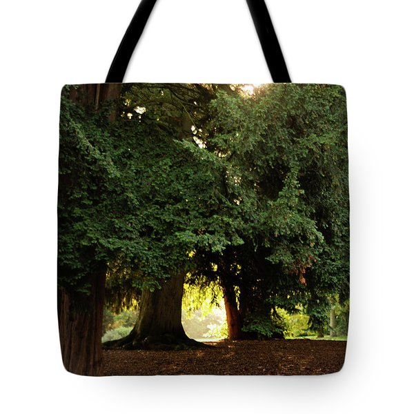 Tote Bag featuring the photograph Portal To Another World by Scott Lyons