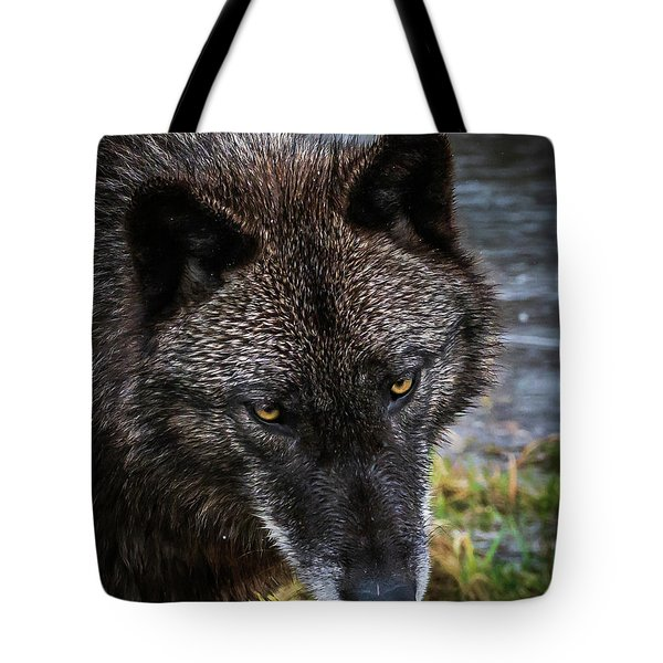 Portrait Niko Tote Bag