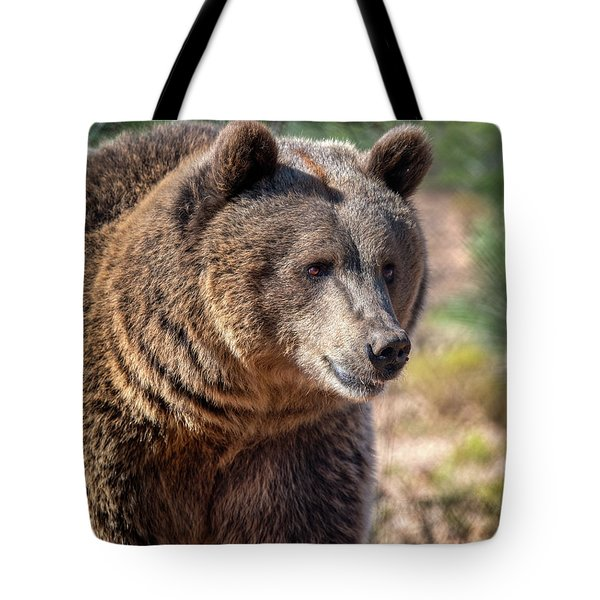 Portrait Of A Female Grizzly Bear Tote Bag