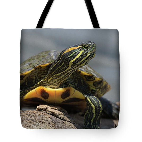 Portrait Of A Turtle Tote Bag