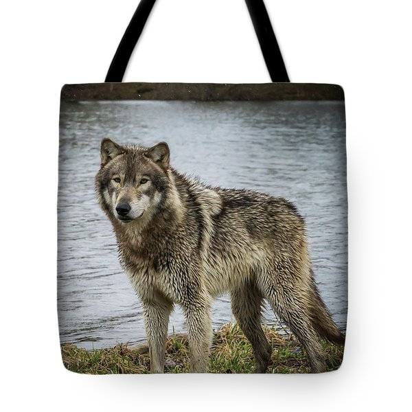 Posing By The Water Tote Bag