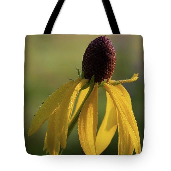 Tote Bag featuring the photograph Prairie Coneflower by Dale Kincaid