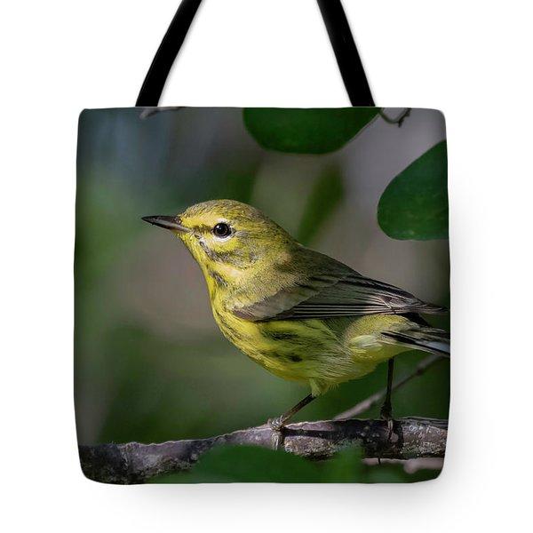 Prairie Warbler Tote Bag
