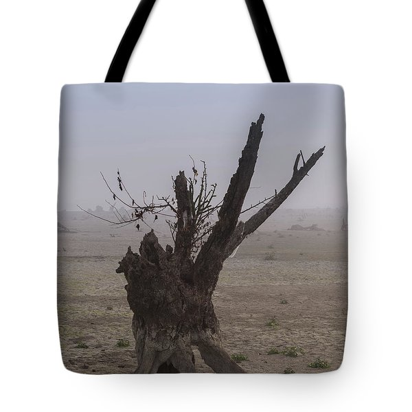 Tote Bag featuring the photograph Prayer Of The Ent by Davor Zerjav