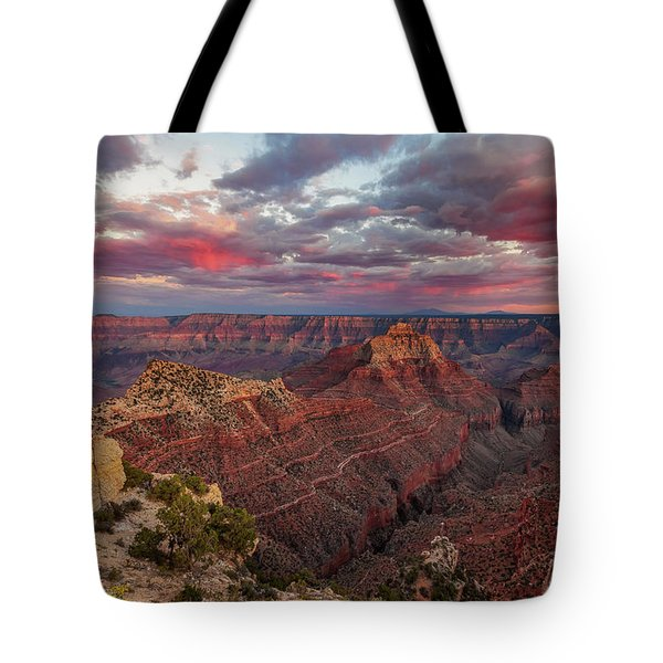 Tote Bag featuring the photograph Pretty In Pink by Rick Furmanek