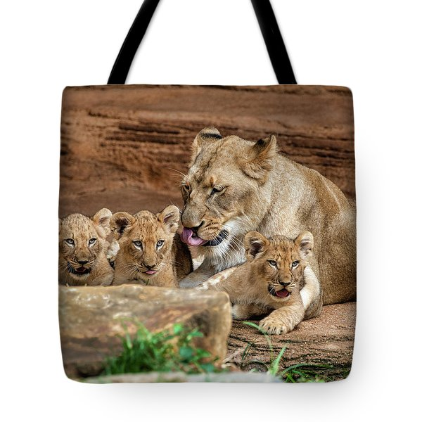Pride Of The Pride 6114 Tote Bag