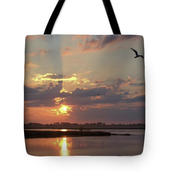 Tote Bag featuring the photograph Prime Hook Sunrise 2 by Buddy Scott