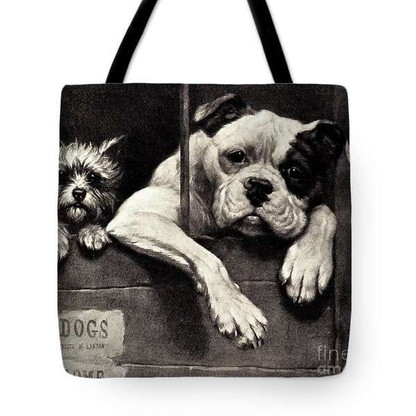 Prisoners At The Bar Tote Bag