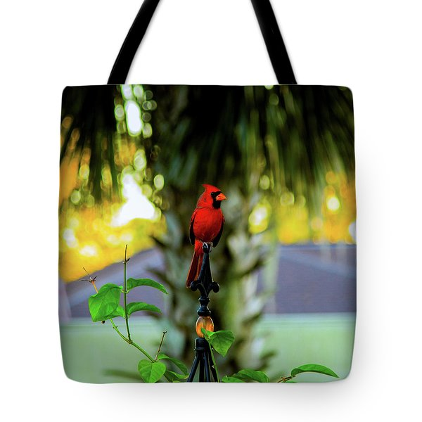 Proud Male Cardinal Tote Bag