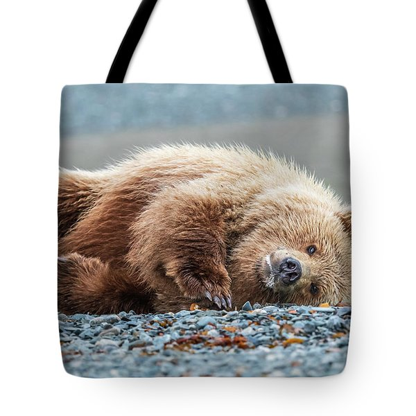 Pudge 2 Tote Bag
