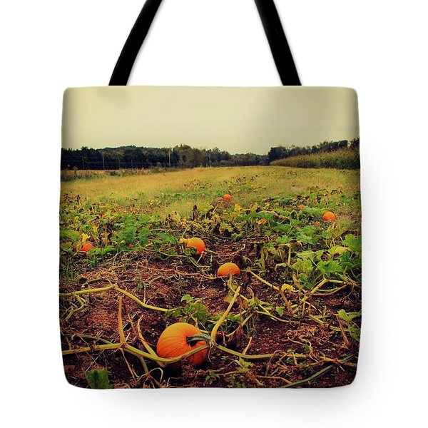 Tote Bag featuring the photograph Pumpkin Picking by Candice Trimble