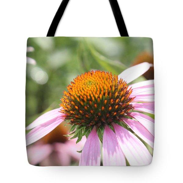 Purple Coneflower Bloom And Petals Tote Bag