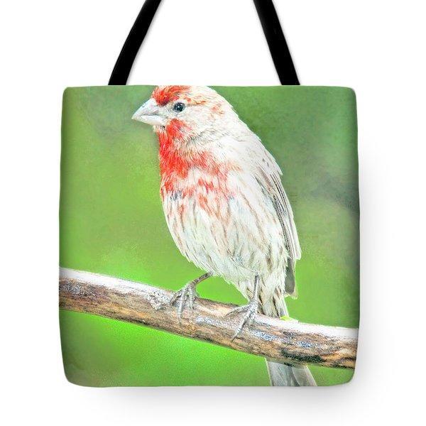 Purple Finch, Animal Portrait Tote Bag