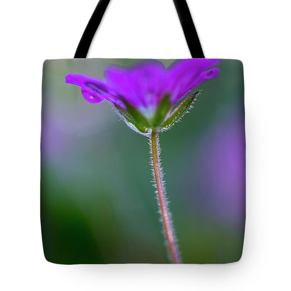 Tote Bag featuring the photograph Purple Flower by John Rodrigues