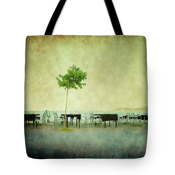 Tote Bag featuring the photograph Quiet Evening by Milena Ilieva