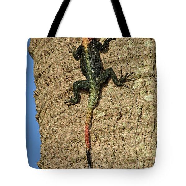 Rainbow Agama Lizard Tote Bag