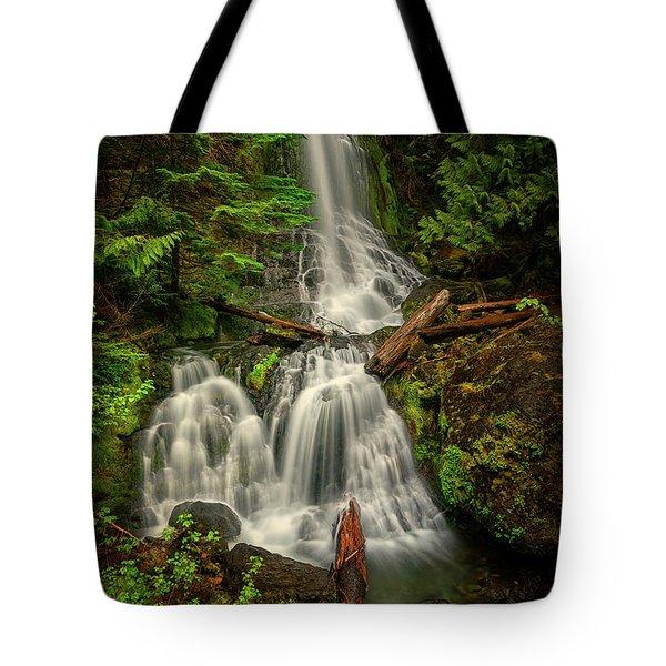 Rainier Falls Creek Falls Tote Bag