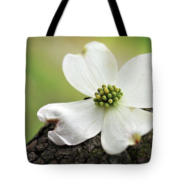 Raining Sunshine Tote Bag
