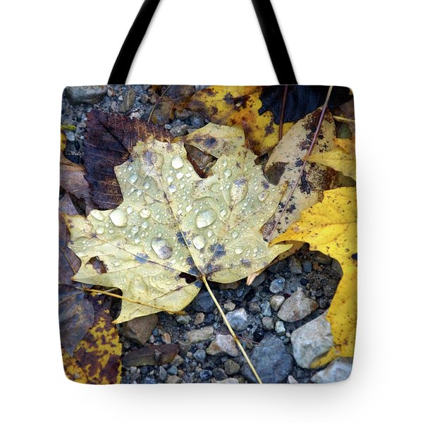 Tote Bag featuring the photograph Rainy Autumn Day by Mike Murdock