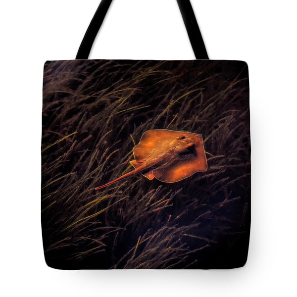 Ray In The Grass Flats Tote Bag