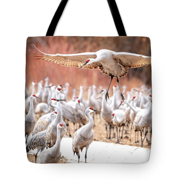 Ready Or Not, Here I Come -- Sandhill Cranes Tote Bag
