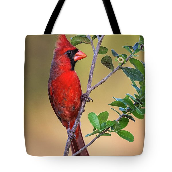 Red All Over Tote Bag