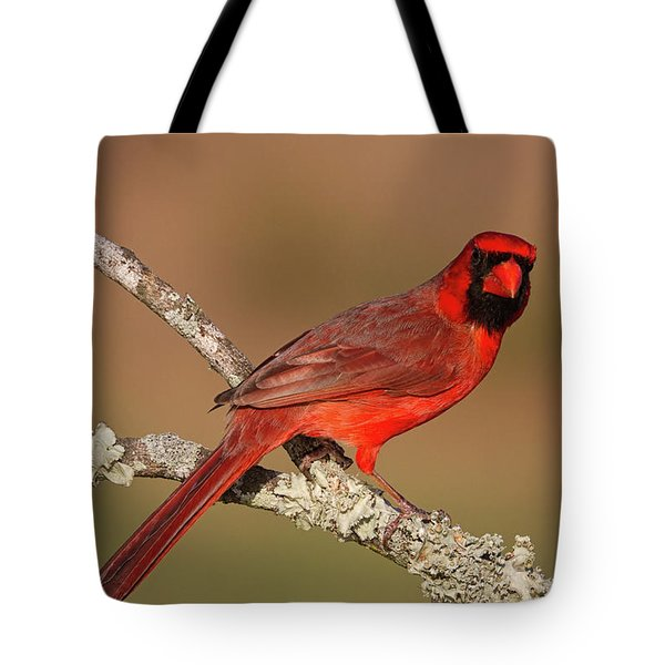 Red And Radiant Tote Bag
