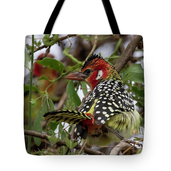 Tote Bag featuring the photograph Red-and-yellow Barbet by Thomas Kallmeyer