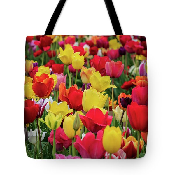 Tote Bag featuring the photograph Red And Yellow Tulips by Louis Dallara