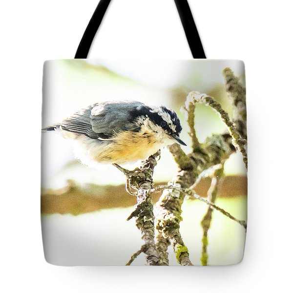 Tote Bag featuring the photograph Red-breasted Nuthatch by Michael D Miller