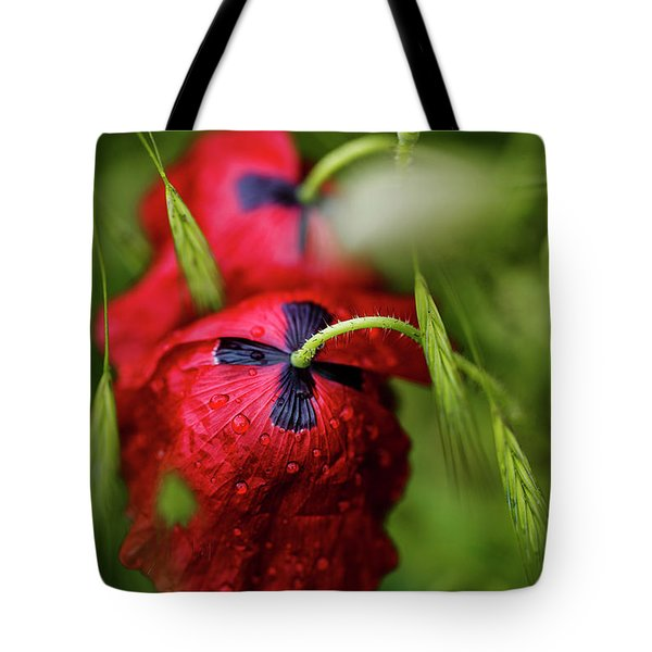 Red Corn Poppy Flowers With Dew Drops Tote Bag