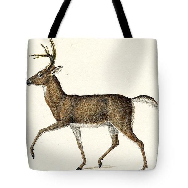 Red Deer, 1824 Colour Litho Tote Bag