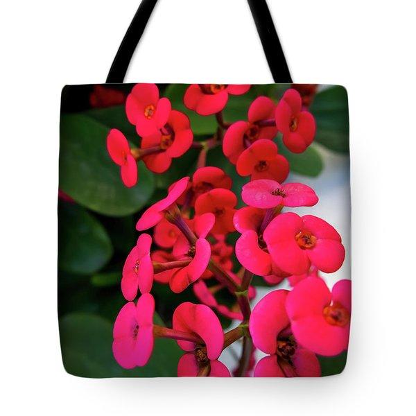 Red Flowers In Bloom Tote Bag