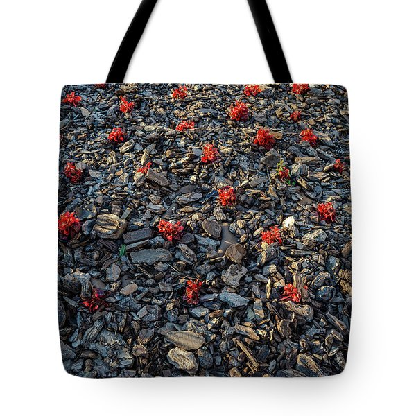 Red Flowers Over Stones Tote Bag