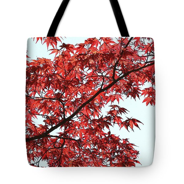 Tote Bag featuring the photograph Red Japanese Maple Leaves by Debi Dalio